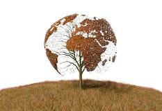 Światowa mapa na drzewie ilustracja wektor