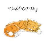 Światowy kota dzień Międzynarodowy wakacje również zwrócić corel ilustracji wektora ilustracja wektor