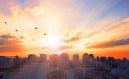 Światowy miasto dnia pojęcie: Duży miasto przy zmierzchem zdjęcie stock