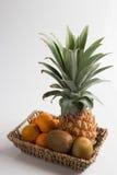 Świeża ananasa, pomarańcze i kiwi owoc, obraz royalty free