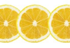 Świeża bezszwowa cytryna pokrajać białego tło zdjęcie stock