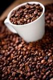 Świeża biała filiżanka gorące brazylijskie kawowe fasole obraz stock