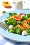 Świeża brzoskwini sałatka z kukurudzą i mozzarellą Zdjęcia Royalty Free
