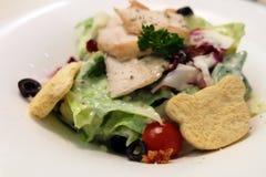 Świeża Caesar sałatka z Niedźwiadkowymi chlebami i kurczakiem na bielu talerzu Zdjęcie Stock