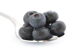 świeża czarnej jagody łyżka Fotografia Stock