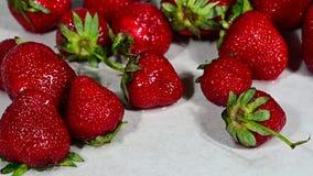 Świeża czerwień myjąca truskawka spada rozsypisko zbiory wideo