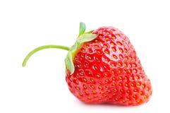 Świeża czerwona truskawka Zdjęcia Stock