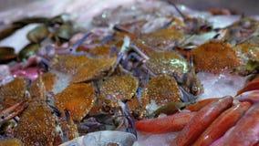 Świeża Denna ryba, kraby, Różnorodny owoce morza Sprzedają na kontuarze sklep na ulicie zbiory wideo