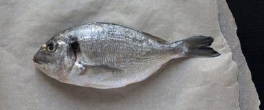 Świeża dorado ryba na pieczenie papierze nad czarnym tłem, odgórny widok Mieszkanie nieatutowy, od above, koszt stały fotografia royalty free
