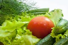 Świeża grupa warzywa na białym tle Zdjęcie Stock