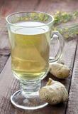 świeża imbirowa herbata zdjęcie stock