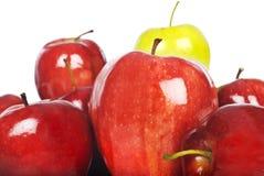 świeża jabłko czerwień Zdjęcie Royalty Free