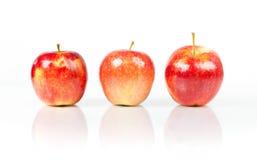 świeża jabłko czerwień Zdjęcie Stock