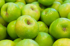 świeża jabłko zieleń Obrazy Royalty Free