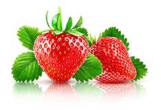 Świeża jagodowa truskawka z zielonymi liśćmi _ obrazy royalty free
