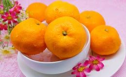 Świeża japońska pomarańcze na białym naczyniu Zdjęcia Royalty Free