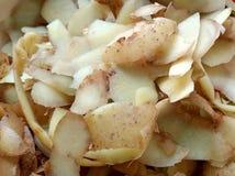 Świeża kartoflana łupa Obraz Stock