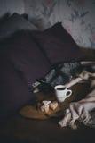 Świeża kawa i ciastka na drewnianej tacy pozyci na łóżku Obrazy Royalty Free