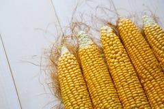 Świeża kukurudza na stołu zakończeniu up Fotografia Stock