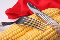 świeża kukurydza Zdjęcie Stock