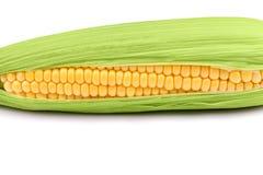 Świeża kukurydzana kukurydza na białym zbliżeniu Zdjęcie Royalty Free