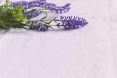 Świeża lawenda kwitnie na białym tkaniny tle obraz stock