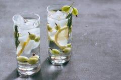 Świeża lemoniada od cytryny i agresta Zdjęcia Stock