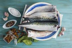 Świeża makrela gotować zdjęcia stock