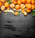 Świeża mandarynka z liśćmi zdjęcie royalty free