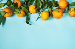 Świeża mandarynka z liśćmi na błękitnym tle Odgórny widok obrazy stock