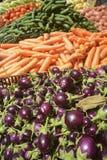 świeża oberżyna i warzywa Fotografia Royalty Free