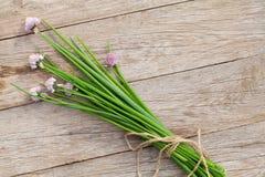 Świeża ogrodowa wiosny cebula na ogródu stole Fotografia Royalty Free