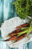 Świeża organicznie marchewka nad drewnianym stołem Fotografia Royalty Free