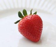 świeża organicznie truskawka Zdjęcie Stock