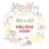 Świeża organicznie wiosny lata owoc i warzywo rama kontur ilustracja wektor