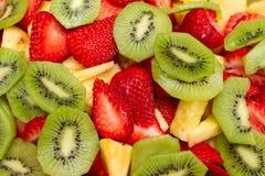 świeża owoc Zdjęcia Stock