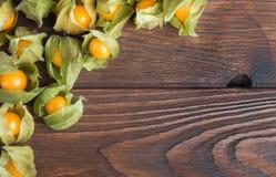 Świeża pęcherzyca na drewnianym stole Zdjęcie Royalty Free