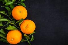 Świeża pomarańcze i liść na czarnym tle obrazy stock