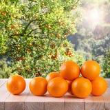 Świeża pomarańcze na drewno stole w ogródzie zdjęcie royalty free