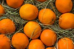 Świeża pomarańcze tekstura na siana tle Fotografia Stock