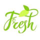 Świeża ręka rysujący logo, przylepia etykietkę, z liściem i flancą Wektorowa ilustracja eps 10 dla jedzenia i napoju, restauracje Obrazy Royalty Free
