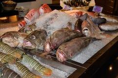 Świeża ryba dla gościa restauracji przy restauracją w Dubaj obrazy royalty free