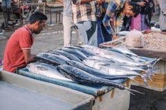Świeża ryba dla sprzedaży przy rynkiem fotografia stock