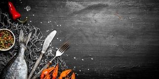 Świeża ryba i shellfish na sieci rybackiej Zdjęcia Royalty Free