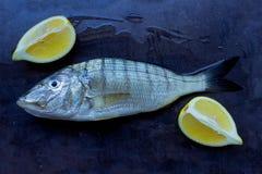 Świeża ryba na czarnym kamienia stole Plasterki soczysta cytryna Conce Obrazy Stock