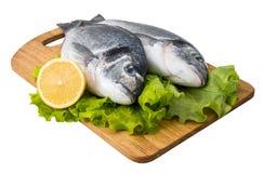 Świeża ryba na drewnianym rozcięciu obraz royalty free