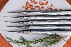 Świeża ryba na półmisku Zdjęcia Stock