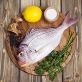 Świeża ryba Pagr na drewnianej desce Obraz Stock