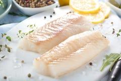 Świeża ryba, surowy dorsz przepasuje z dodatkiem ziele i cytryna zdjęcie royalty free
