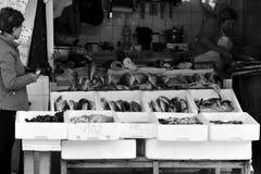 Świeża ryba w targowym Bolhao, Porto, Portugalia zdjęcie stock